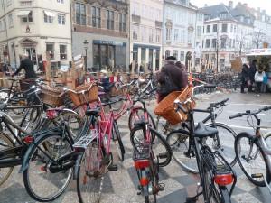 Everyone Has a Cycle in Copenhagen, Denmark
