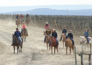 Spend the day horseback riding to local wineries.