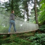 Tree-house hotel trails