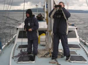 marine conservation_cetacean observation duty
