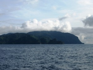 shark diving_cocos island