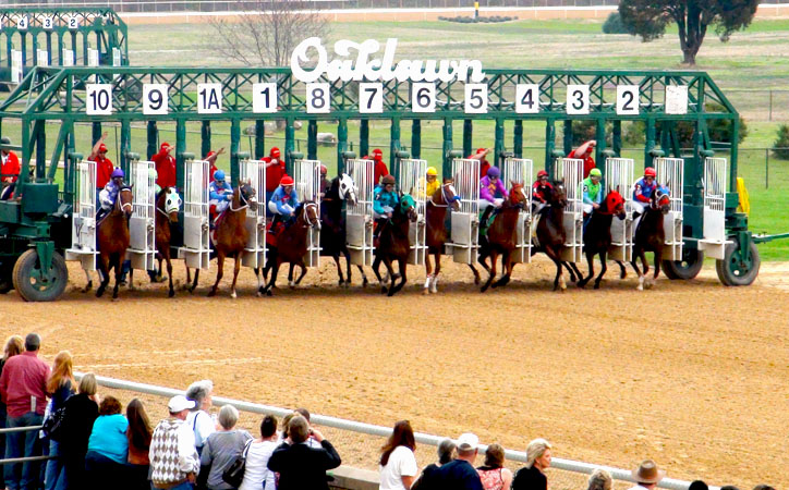 Oaklawn thoroughbreds