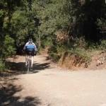 Parc de Collserola Cyclist