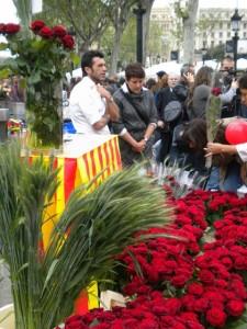 Sant Jordi's Day - red roses!