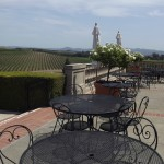 Napa or Sonoma? Which One Should You Choose