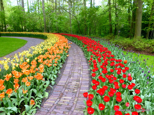 One of the paths at Keukenhof Gardens