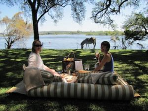 A picnic by the Zambezi River with grazing zebra.
