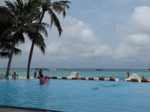 A tough choice - the pool or the ocean?