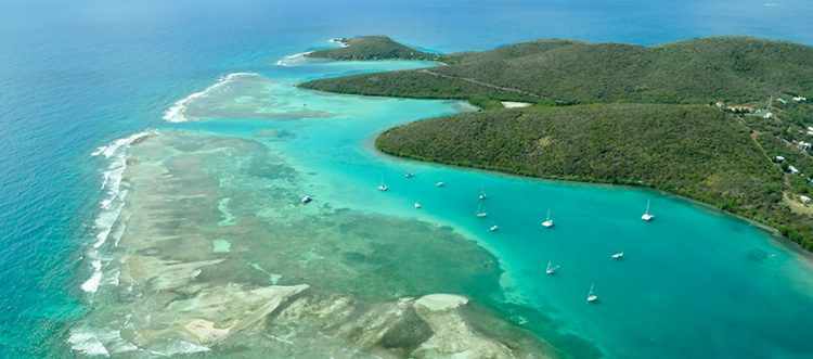 Learn more about: Caribbean Treasures