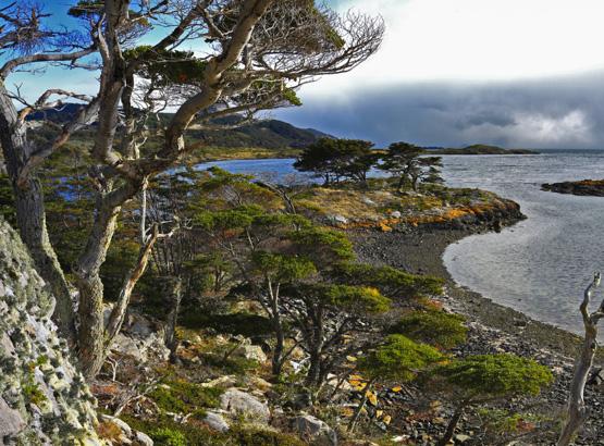 Cape Horn - Wulaia Bay