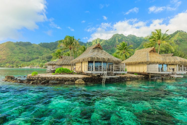 Learn more about: Dreams of Tahiti
