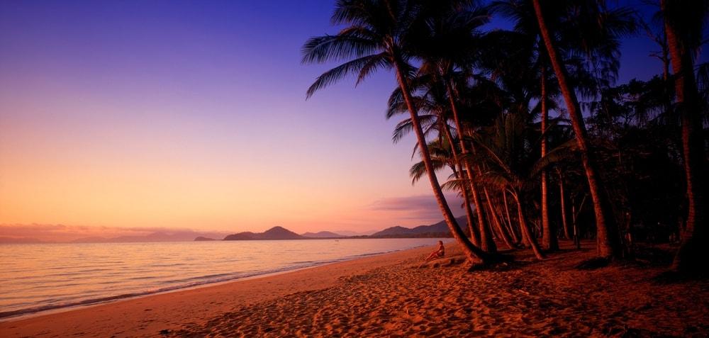 Palm Cove at Dawn