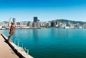 Martinborough - Wellington